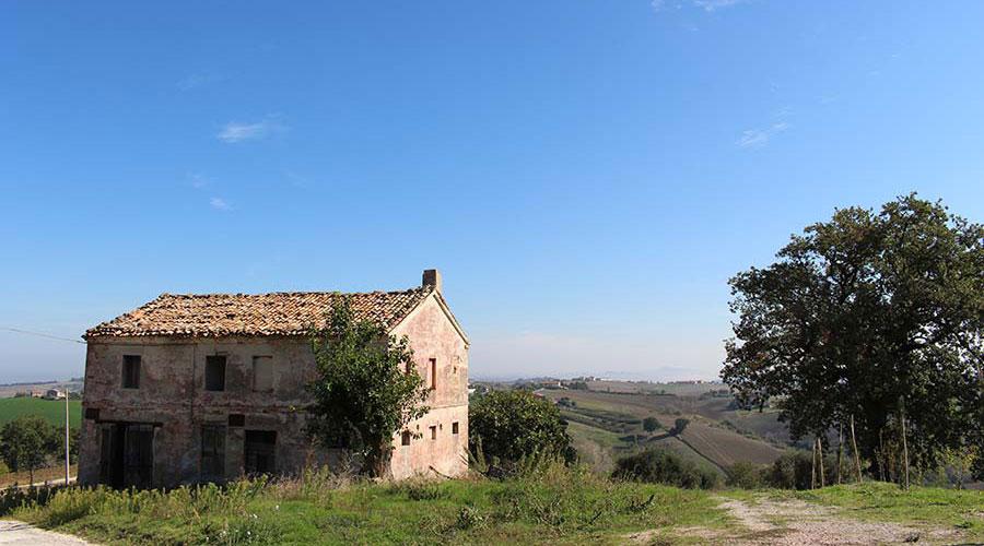 Casale Vignabella da restaurare, nella campagna di Staffolo
