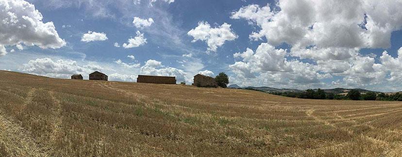 Paesaggio di campagna nelle Marche - il blog di Marche Country Homes