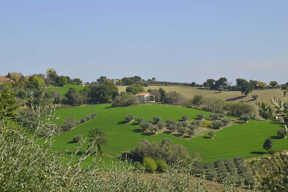 Casale con terreno a Ostra vicino Ancona