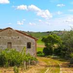 casali nelle Marche con terreno agricolo