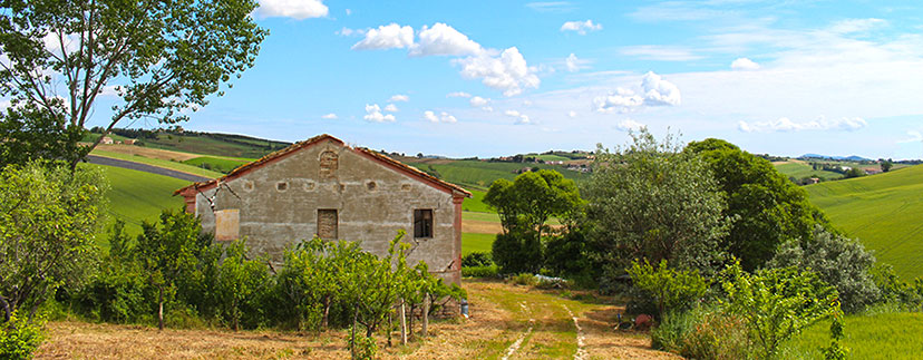 Farmhouses in the region Marche