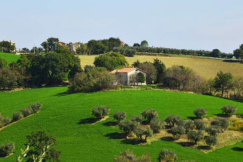 Casale da ristrutturare a Ostra