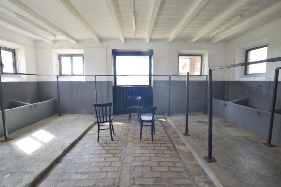 casale-montamarciano-stalla