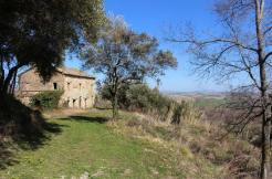 Farmhouse Olivo Cingoli