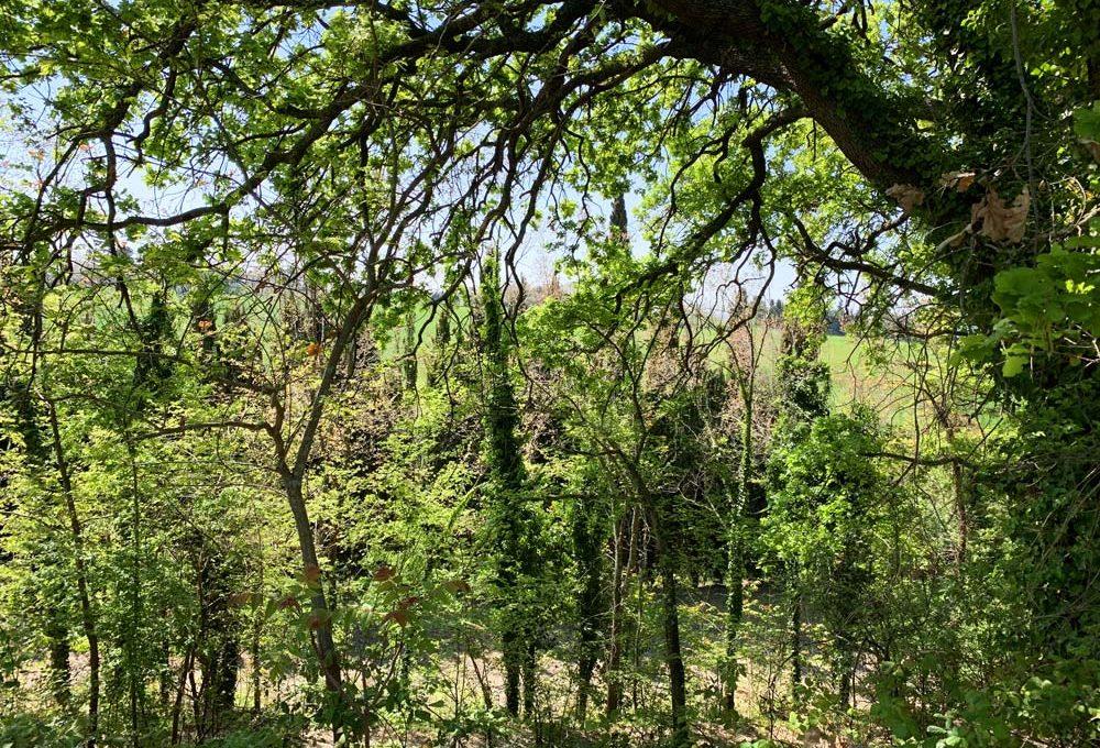 casale-filoro-querceto