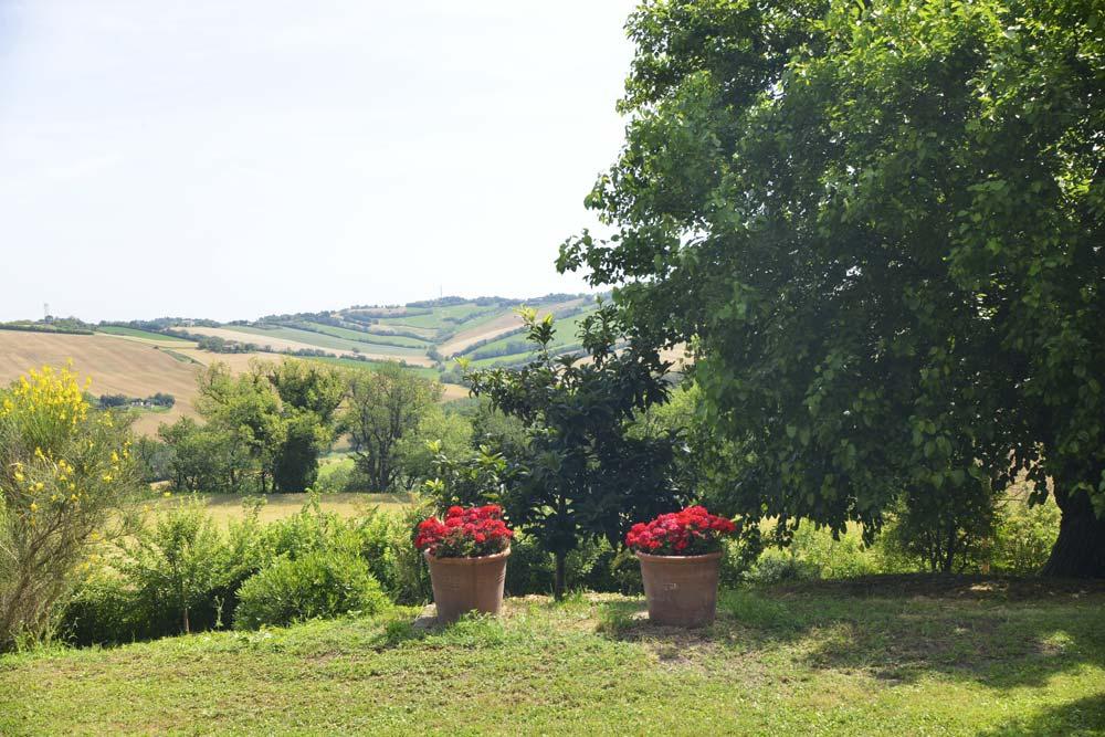 casale-senigallia-panorama
