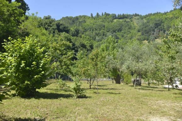 casale-trabocco-bosco