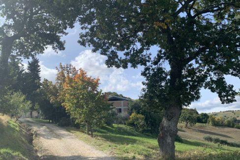 Querciabella-gate