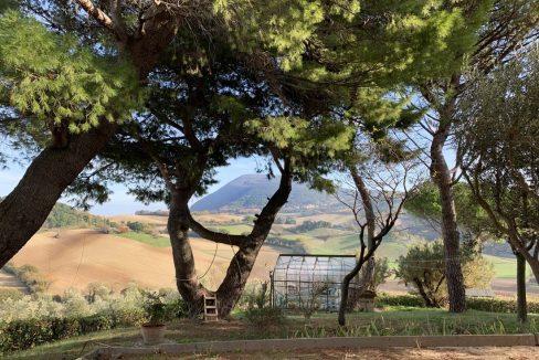 Boranico-lato-mare