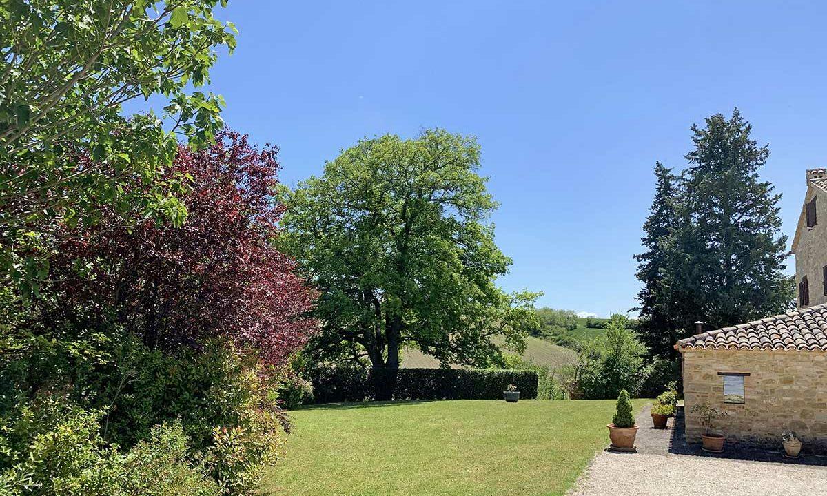 casale-cingoli-lawn