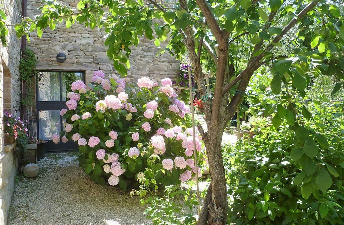 Casale-Montefeltro-gardenia