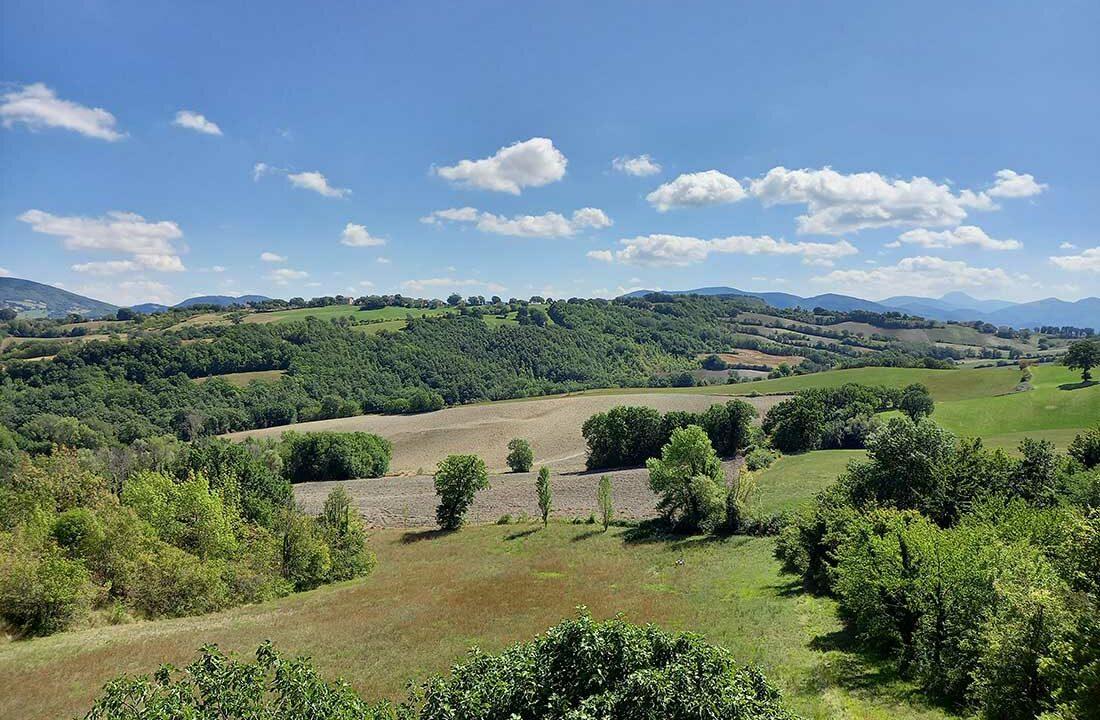 Bellaria-campo