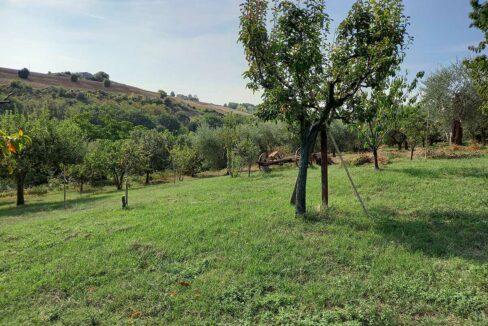 Sant'Elpidio-campo