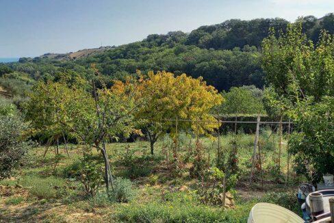 Sant'Elpidio-coltivazioni