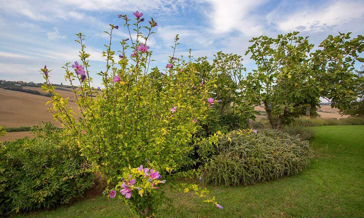 casale-piagge-garden